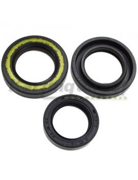 X30 Seal Kit 3 pc  IAME Part No.: X30125880 IAME Part No.: X30125425A