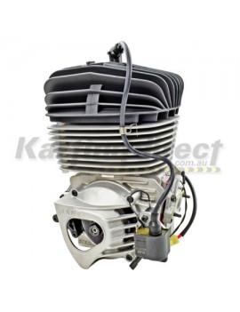 IAME KA100 TAG Engine Kit  IAME Reed Jet